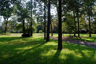 Houston Residential Lots & Land For Sale: 8828 Sandringham Drive