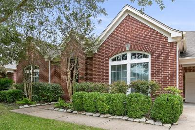 Houston Single Family Home For Sale: 419 Crestwater Trail Trail