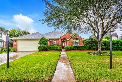 Pearland Single Family Home For Sale: 8401 Rayleine Drive