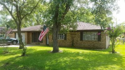 Brazoria Single Family Home For Sale: 306 Avenue G