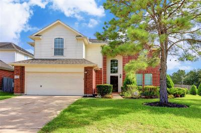 Sugar Land Single Family Home For Sale: 14102 Becket Woods Lane