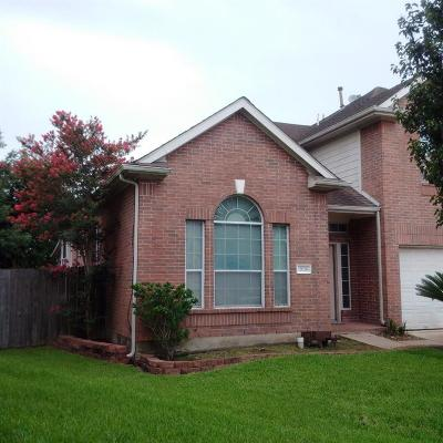 Houston Single Family Home For Sale: 12026 Raven View Drive