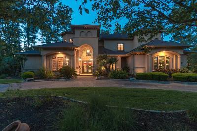 The Woodlands Single Family Home For Sale: 54 E Ambassador Bend