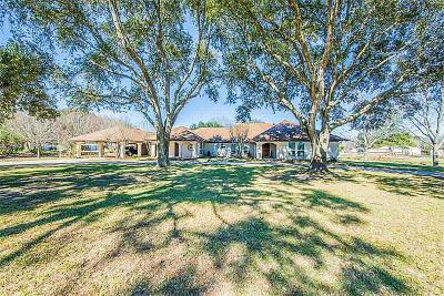 Fort Bend County Farm & Ranch For Sale: 26602 Willow Lane