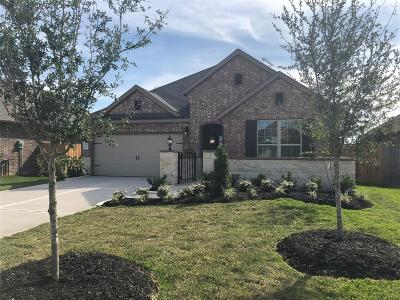 Fulshear Single Family Home For Sale: 3906 Kellys Falls Lane