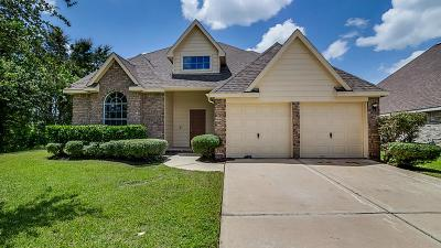 Pearland Single Family Home For Sale: 3520 Dorsey Lane