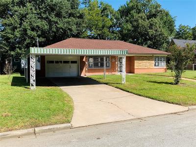 Houston Single Family Home For Sale: 617 Graceland Street