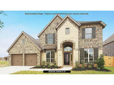 Missouri City Single Family Home For Sale: 3334 Shadow View Lane