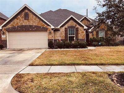 Houston Single Family Home For Sale: 13714 Lake Livingston Drive