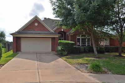 Missouri City Single Family Home For Sale: 2602 Sugarbush Lane
