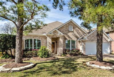 Pearland Single Family Home For Sale: 3518 Pine Chase Drive