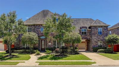 Houston Single Family Home For Sale: 12511 Paloma Park Lane