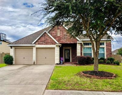Pearland Single Family Home For Sale: 2001 Oak Top Drive