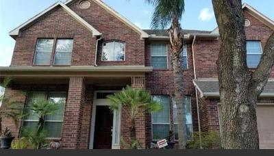 Pearland Single Family Home For Sale: 10007 Autumn Lake Trail