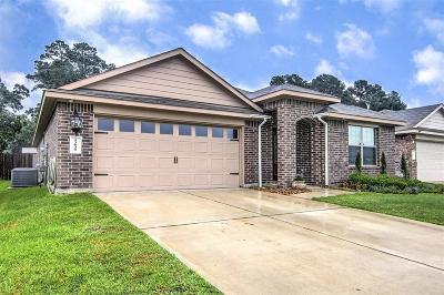 Tomball Single Family Home For Sale: 23030 Ari Creek Way