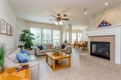 Katy Single Family Home For Sale: 2519 Blue Water Bay Drive