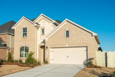 Conroe Single Family Home For Sale: 17649 Northern Harrier Court