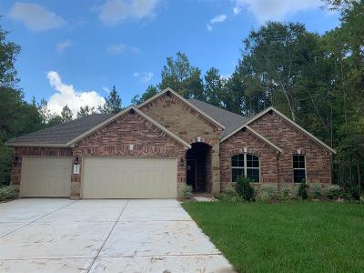Conroe Single Family Home For Sale: 11250 Quiet Lake Drive
