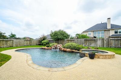 Fort Bend County Single Family Home For Sale: 2810 Kestrel Trace Lane