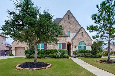 Katy Single Family Home For Sale: 2919 Chapel Rock Court