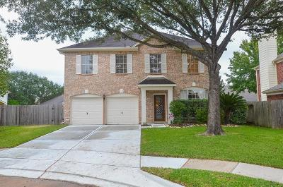 Sugar Land Single Family Home For Sale: 211 Windrift Court