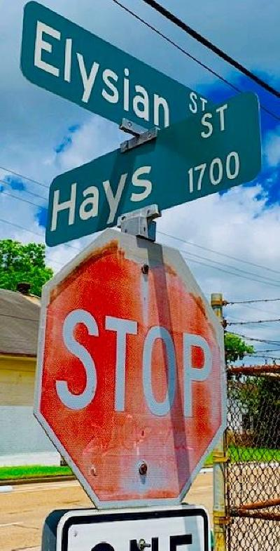 Houston Residential Lots & Land For Sale: 3102 Elysian Street