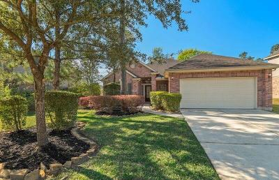 The Woodlands Single Family Home For Sale: 131 N Archwyck Circle