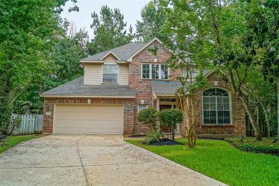 The Woodlands Single Family Home For Sale: 11 Cider Mill Court