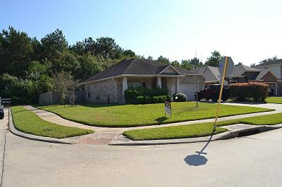 Houston Single Family Home For Sale: 14446 Santee Pass Drive