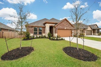Katy Single Family Home For Sale: 28727 Fitzroy Harbour Place
