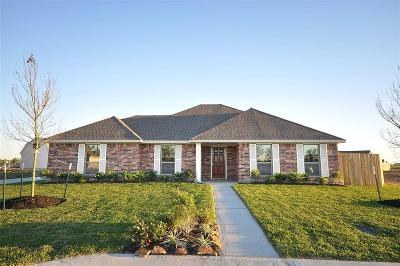 Manvel Single Family Home For Sale: 6822 Arlington Drive