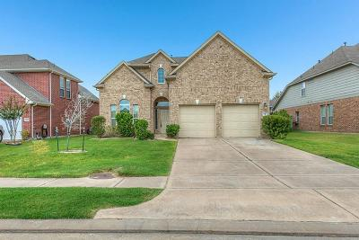 Katy Single Family Home For Sale: 3427 Raintree Village Drive