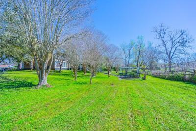 Sugar Land Single Family Home For Sale: 16619 Denver Miller Road