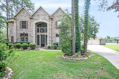 Cypress Single Family Home For Sale: 17303 E Blooming Rose Court