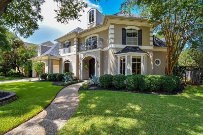 Sugar Land Single Family Home For Sale: 19 Schubach Drive