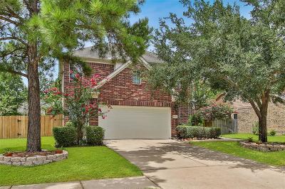 Houston Single Family Home For Sale: 8323 Brighton Lake Lane