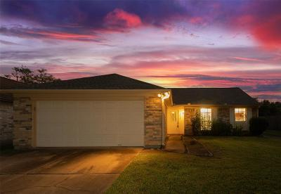 Sugar Land Single Family Home For Sale: 3822 Stovepipe Lane