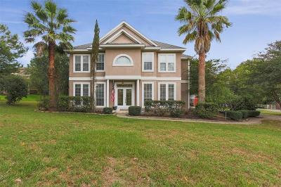 Montgomery Single Family Home For Sale: 421 Trace Way Drive