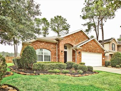 Cypress Single Family Home For Sale: 14031 Pawnee Bend Drive