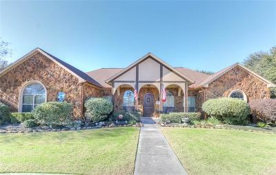 Tomball Single Family Home For Sale: 25811 Navajo Place Drive