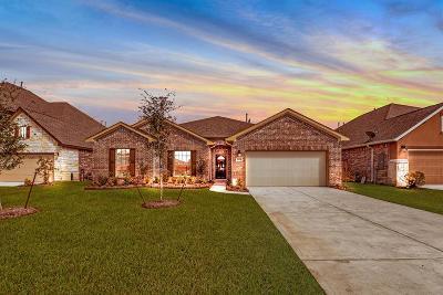 League City Single Family Home For Sale: 2319 Vineyard Terrace Lane