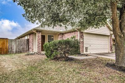 Tomball Single Family Home For Sale: 19719 Shores Edge Drive