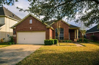 Sugar Land Single Family Home For Sale: 4826 Russett Lane