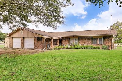 Rosenberg Single Family Home For Sale: 6210 Eagle Drive