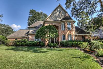 Kingwood Single Family Home For Sale: 3218 Spring Manor Drive
