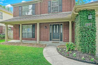 Single Family Home For Sale: 18 W Stony End Place