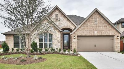 Single Family Home For Sale: 10703 Balivcar Court
