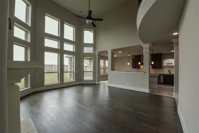Fulshear Single Family Home For Sale: 30718 Falcon Trace