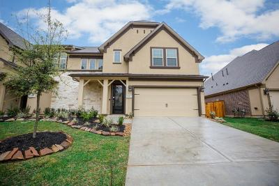 Conroe Condo/Townhouse For Sale: 137 Skybranch Drive