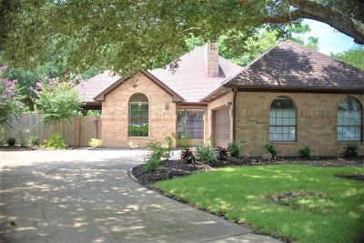 Bay City Single Family Home For Sale: 7 Valhalla Drive